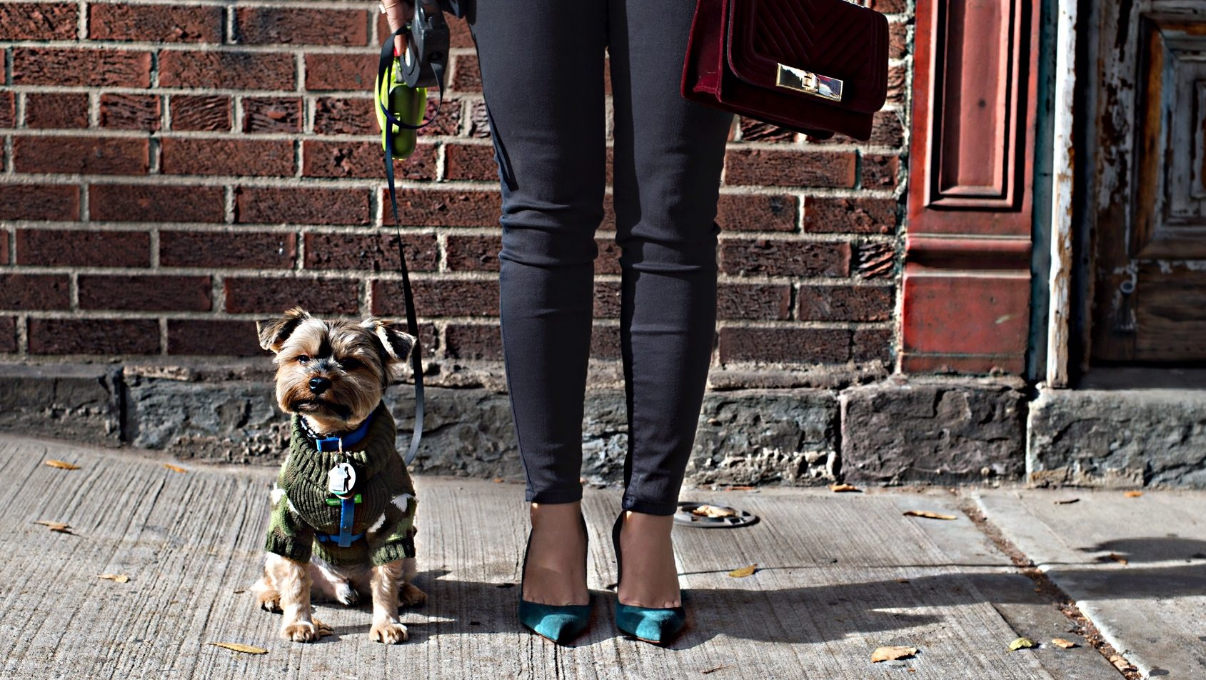 street style blog with puppy e1480629678651 - Skinny Jeans with Blazer Jacket
