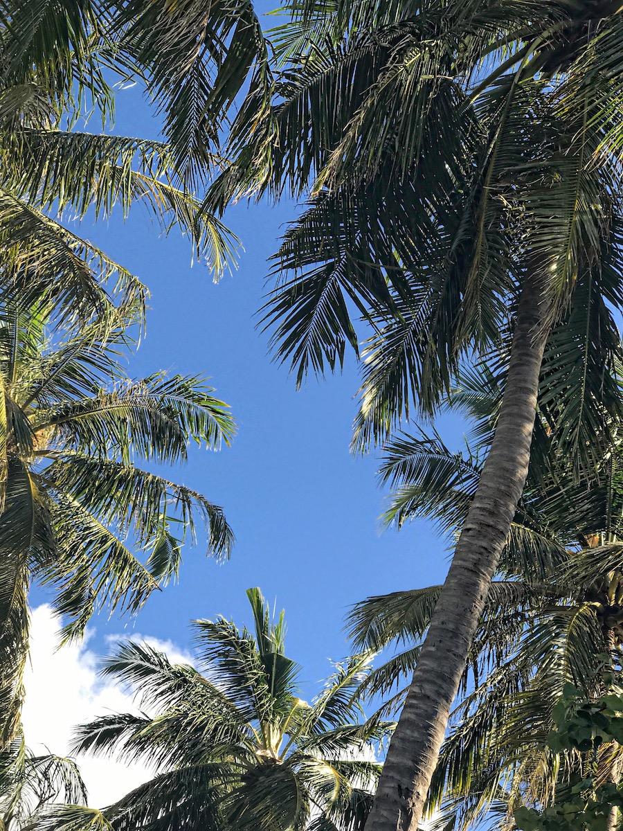 maldives-alley-girl-fashion-travel-life-style-blog
